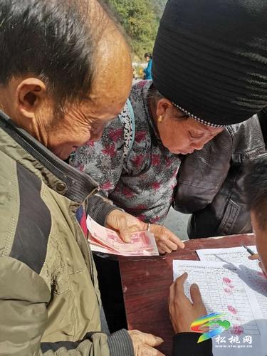 盘信镇长坪村:羊肚菌产业获丰收 贫困群众喜分红